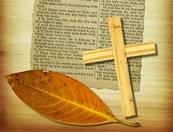 bible verses about how get rich quick