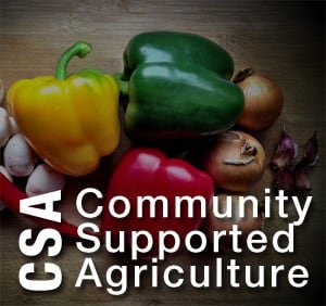 community supported agriculture csa